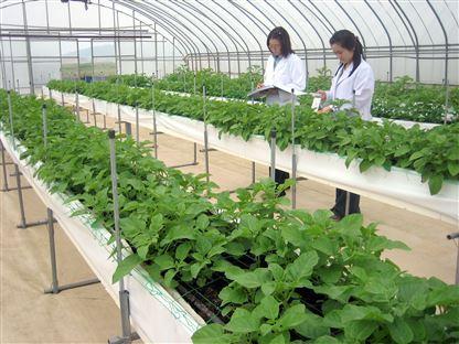 Thông báo Kế hoạch tổ chức kỳ thi tiếng Hàn trong ngành nông nghiệp năm 2019